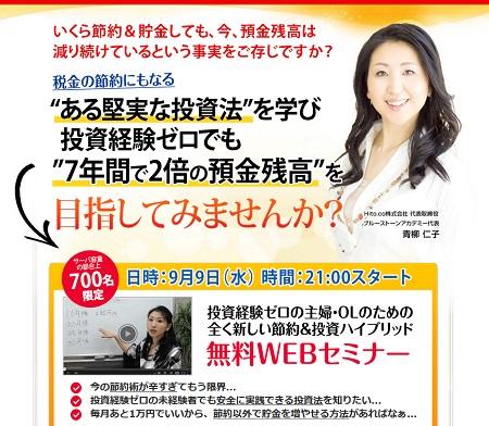 setsuyakutoushihighbrid450.jpg